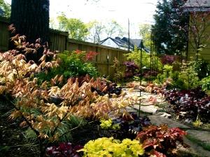 Heuchera lines the garden path