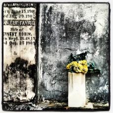 Favre's faux flora