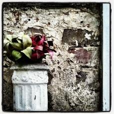 fauxlilies