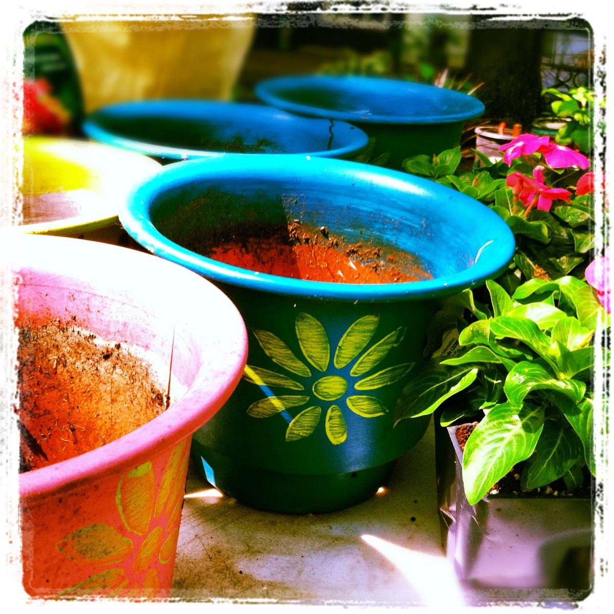 Cheap plastic pots, fun paint