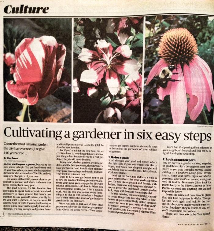 City Paper gardens