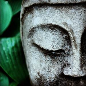 Halcyon garden Buddha