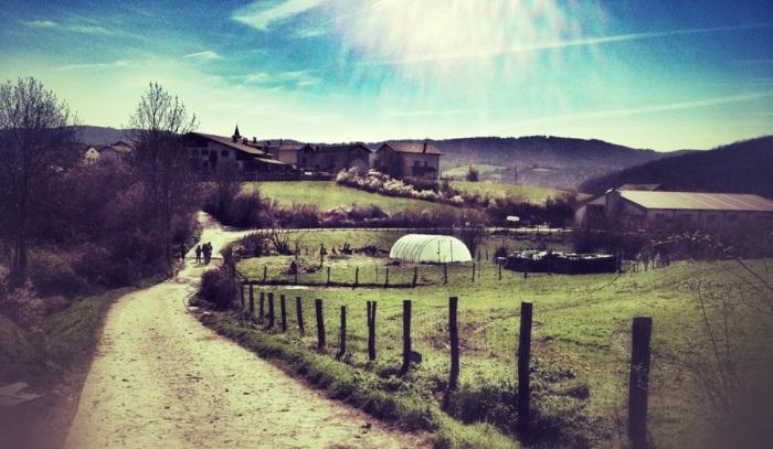 Navarrese landscape