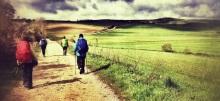 colorful peregrinos