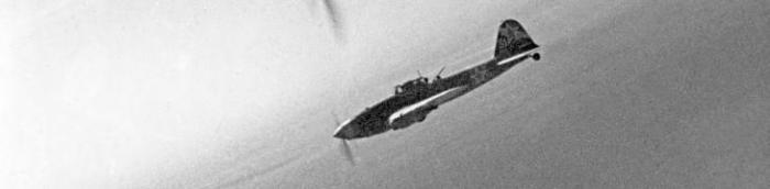 cropped-il-2s-no-text-on-back1