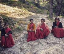 Uttarakand porters
